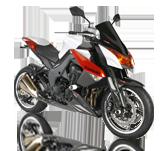 Kawasaki Z1000 10-13